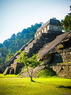 Palenque, Maya city in Mexico