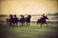 They're off (comeback_special) Tags: summer horses toronto ontario racetrack canon outdoors eos racing textures layers recreation woodbine races betting slots bets