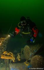 Diver in Lake Oostvoorne