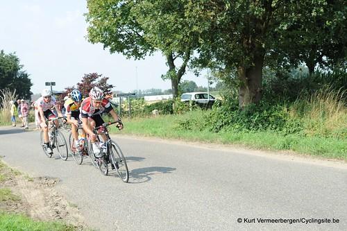 Geel Oosterlo  (97)