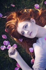 I Wouldn't Give Up Loving You (Jessica-H-Ingram) Tags: pink red woman white color colour love girl hair photography book ginger photo petals colorful skin head pale petal story cover colourful conceptual telling ophelia unrequited