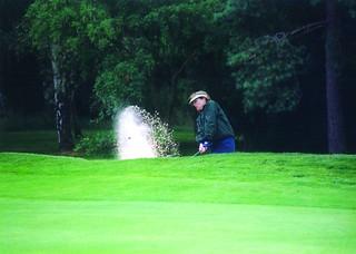 tina-golf