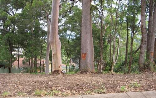 100 Dangerfield Drive, Elermore Vale NSW