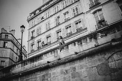 **** (StylelaB) Tags: portrait paris france beauty fashion photography model friend parisian stylelab ahuypham