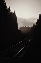 Autumn mist (P a t i o r) Tags: autumn mist rails
