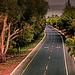 empty highway_