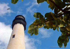 Look up to the sky (Back again!) Tags: park sky lighthouse nature bill state florida bluesky bleu cape baggs