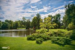 Sanssouci Park II (Andy Brandl (PhotonMix.com)) Tags: park trees sky lake tree nature clouds reflections germany landscape nikon nopeople foliage vegetation serene potsdam tranquil d800 sanssoucipark photonmix