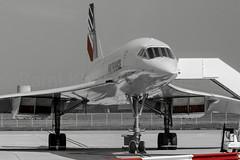 Air France Aerospatiale Concorde (Rami Khanna-Prade) Tags: fbvfc aerospatiale msn 209 afr af airfrance airport aeroport lfbo tls aeroporttoulouseblagnac toulouseblagnacairport avions aircraft concorde50ans avgeek concorde50 50ansconcorde concordelovers concordeforever concorde