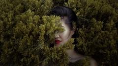 226/365 Glimpse - Voyeur II (Katrina Y) Tags: selfportrait art artsy color trees bush mood moody red lips 2017 365project surreal creative concept creepy conceptual hair surrealphotography sunlight self