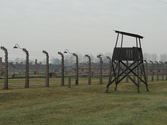 The main camp (AKphotographyStaffordshire) Tags: amandaweller karlweller amanda weller karl staffordshire akphotography jew hollocaust nikon poland germany nazi birkenau auschwitz concentration concentrate