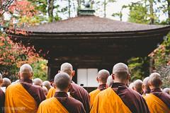 Koya-san (Steffen Walther) Tags: 2015 japan reise steffenwalther koyasan travel asia buddhism buddha ceremony pray orange momiji autumn pagoda reisefotolust canon702004lis canon5dmarkiii monk religion
