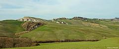 Crete Senesi (Darea62) Tags: crete tuscany landscape hill panorama clay asciano acconadesert trees grass farm cretesenesi agriculture