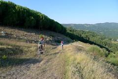 Bici Trekking