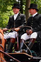 A fine day (RW-V) Tags: holland nederland thenetherlands paysbas apeldoorn niederlande canoneos60d canonef100mmf28lmacroisusm 200jaarkoninkrijkdernederlanden granddefil