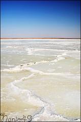 Lac de Sel Djerba. (nanie49) Tags: island nikon djerba ile bleu saltlake isla tunisie mditerranne lacdesel lagodesal d7000 nanie49