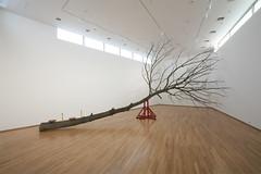 시소 SEESAW     Oak tree, Steel.     1200 X 600 X 500 (cm)  472 X 236 X 197 (inch)