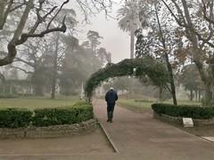 30062014305 Niebla en una maana invernal (Plaza Coln, Lujn, Argentina) (marialuz_fernandez) Tags: plaza morning winter mist maana fog square town nokia buenosaires foggy invierno niebla lujn e5002