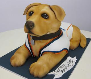 Colby Dog Cake med