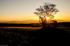 Mpumalanga African Sunset