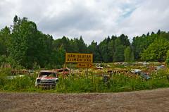 The old car Cemetery (saabrobz) Tags: cemetery car junk sweden ghost sverige junkyard scrapyard vg carcemetery hr allmn bstns slutar
