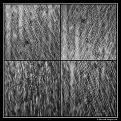 Quad Tych (Dervish Images) Tags: newzealand blackandwhite bw monochrome square mono squareformat taranaki quadtych newplymouth tych dervishimages