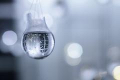 Lightbulb III