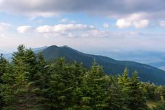140706-3289 Mount Mitchell (WashuOtaku) Tags: statepark northcarolina mountmitchell nikond800