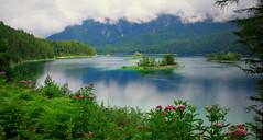 Dream on (Eibsee, Bayern) (armxesde) Tags: summer cloud mist lake mountains alps reflection water fog germany bayern deutschland bavaria see pentax berge alpen spiegelung ricoh k5 eibsee baviera