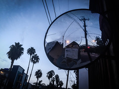 Shattered Mirror & Palm Trees - West Hollywood, CA (ChrisGoldNY) Tags: california travel usa cali america poster la losangeles forsale mirrors palmtrees viajes socal posters albumcover bookcover shattered westhollywood magichour bookcovers albumcovers licensing weho iphone laist sanvicente chrisgoldny chrisgoldberg chrisgold chrisgoldphoto chrisgoldphotos