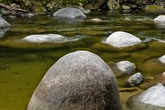Rocky River (BryceWalker) Tags: nature river 50mm nikon rocks d70s mossman qld gorge