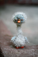 little duckling (oso_polar) Tags: baby toy duck swan doll handmade ugly ducking