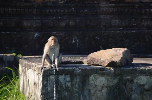 20140810 Preah Vihear Temple - 220