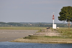 Baie de somme (the yellowrider) Tags: mer france picardie baiedesomme nikon55200 nikond90