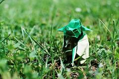 Jedi Master Yoda (annapavie) Tags: nature toys star yoda master jedi laser wars