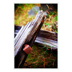 square peg (khrawlings) Tags: wood abandoned grass metal wales rust post decay nail cymru grain oxidation peg plank gwynedd corrode llyn khrawlings