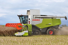 Claas Lexion 760 Terra Trac Combine Harvester cutting Oil Seed Rape (Shane Casey CK25) Tags: county autumn ireland winter horse irish brown green field work golden hp corn chopper nikon power cut farm cork farming grain working harvest seed straw rape till crop combine cutting oil land crops farmer blade agriculture dust terra pulling contractor chaff collect blades harvester collecting tilling trac harvesting 2014 760 osr claas agri d90 lexion tillage glanworth wosr harvest2014