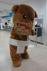 DSC07986 () Tags: mascots