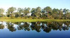 Mirror image (kevin.crawford31) Tags: trees reflection landscape fishing florida lakes puntagorda bassfishing cecilwebbarea