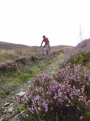 Eilidh Hooning Downhill