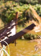 Rod on the River DK (jan.ludwicki) Tags: blue green water grass canon eos wasser wiese rod gras grn blau fluss dnemark danmark dansk busch dne stange gebsch 70d metalstange