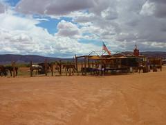 2010-USA-MonumentValley-1000397 (Mille.12) Tags: arizona usa landscape utah canyon valley western navajo monumentvalley landschaft tal wste 2010 indianreservation navajotribalpark oljatomonumentvalley