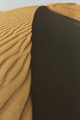 Kuwait - Al Salmi Desert - Ripples Light Vs. The Shadow (Sarah Al-Sayegh Photography | www.salsayegh.com) Tags: weather canon sand desert kuwait q8 الصحراء landscapephotography q8city stateofkuwait كانون الرمال canoneos5dmarkiii canon5dmark3 wwwsalsayeghcom sarahhalsayeghphotography infosalsayeghcom