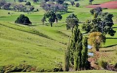 132 Dowling Drive Murringo, via, Young NSW