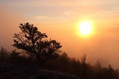 Misty Morning (John Tavares Jr) Tags: morning ontario canada misty fog lookout northernontario sioux northwesternontario siouxlookout
