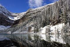 Alpine? (JB by the Sea) Tags: canada rockies alberta banff rockymountains lakelouise lakeagnes banffnationalpark canadianrockies september2014