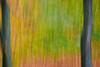 art inst a20121111_252-Edit (azp3) Tags: chicago dan movement fallcolors danielle places milleniumpark best il card loren briarwood artinstitute amyphotos danballard otherkeywords
