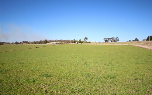 Lot 33 Bellevue Road, Tenterfield NSW 2372