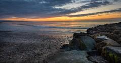 Morning has broke (Richard Lynam) Tags: highquality infocus landscapes rosslare wexford color highcontrast ireland flickr