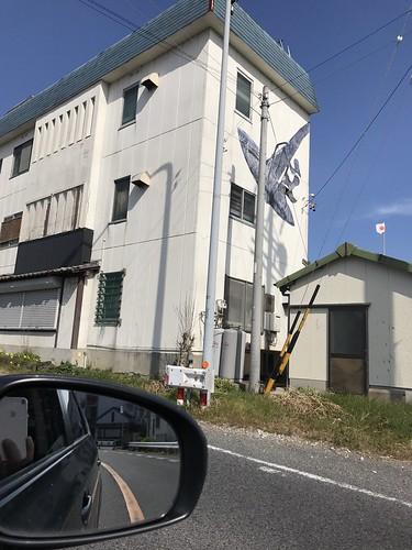 戸塚ヨットスクール 画像2